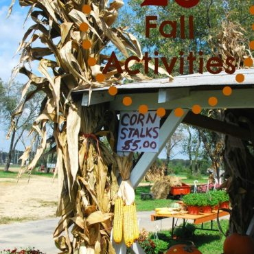 23 Fall Activities