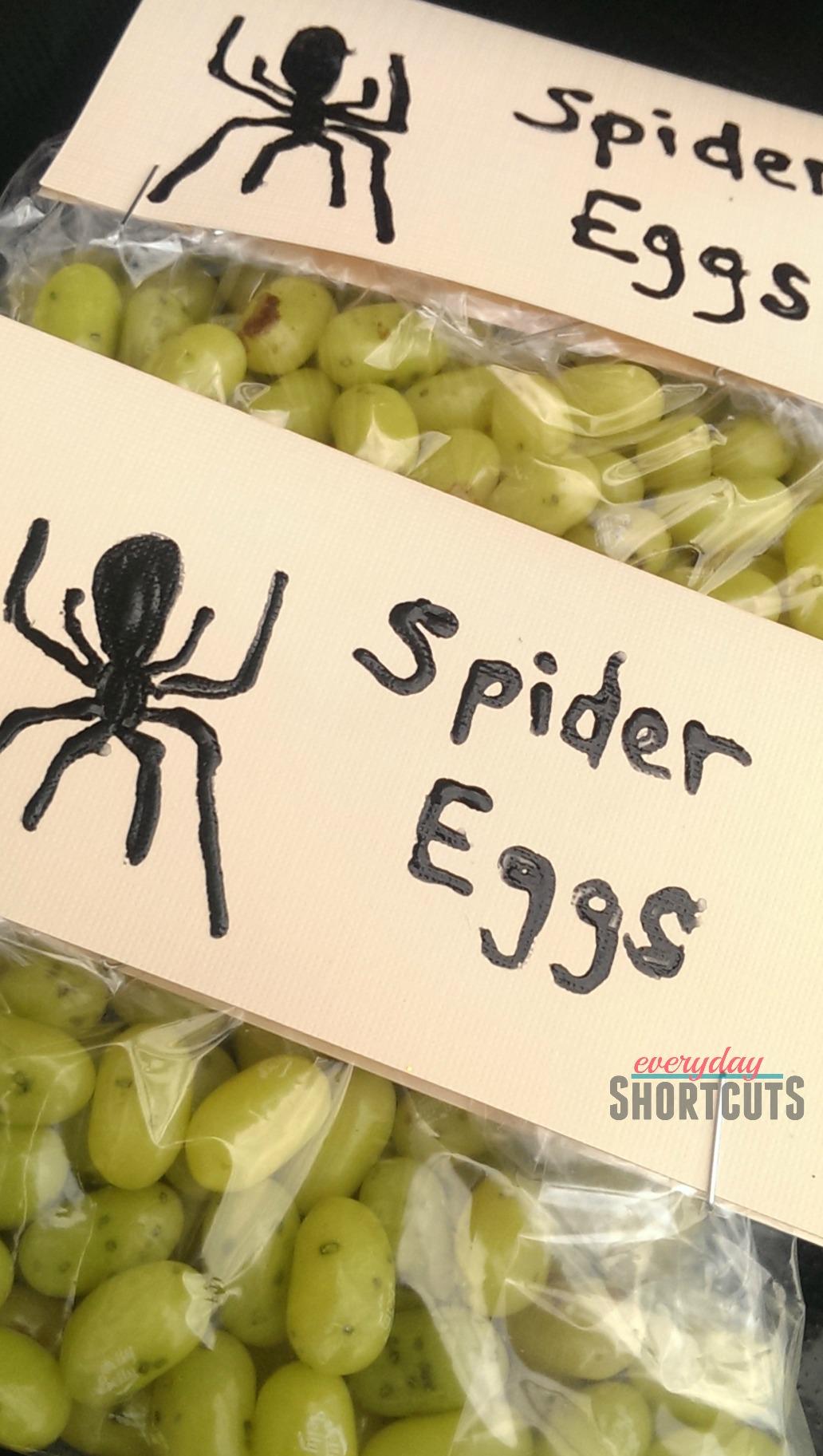 spider-eggs