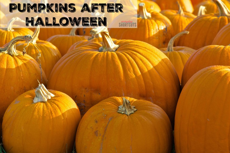 10 Uses for Pumpkins after Halloween