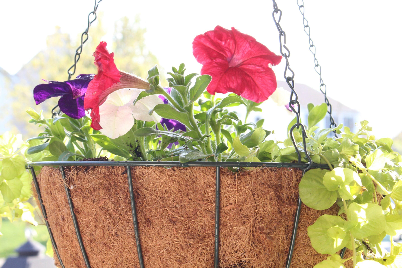 DIY Hanging Flower Basket