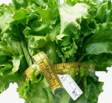 Weight Watchers PointsPlus Program