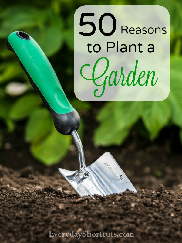 Reasons-to-Plant-a-Garden