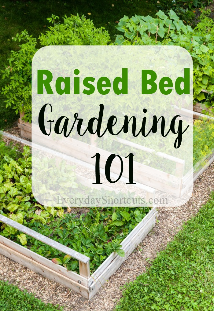 raised-bed-gardening-101