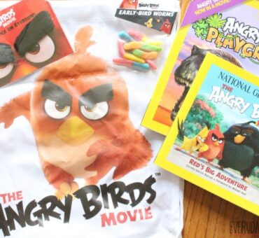 New Angry Birds Books from National Geographic are Great for Summer Reading