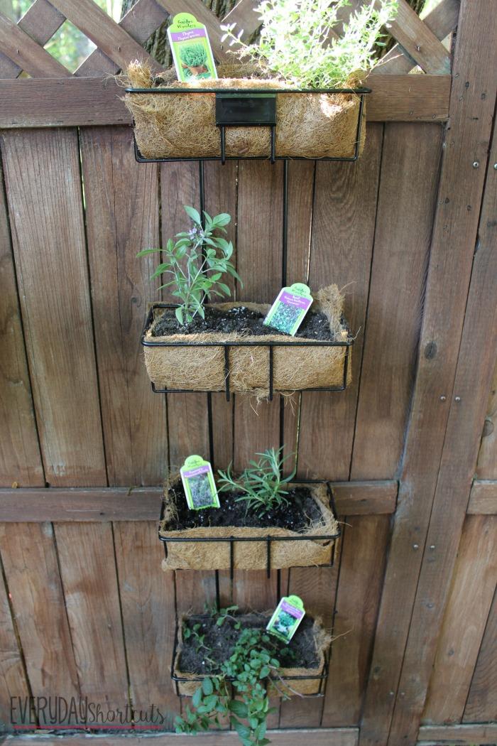 herb garden final