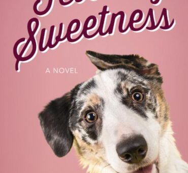 Fetching Sweetness by Dana Mentink