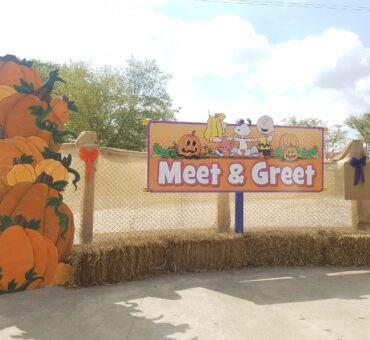 Reasons to Visit The Great Pumpkin Fest at Kings Island