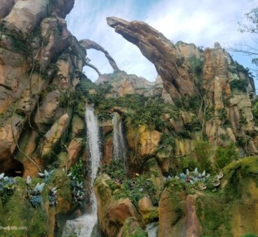 5 Things You Don't Want to Miss at Disney's Pandora – The World of Avatar