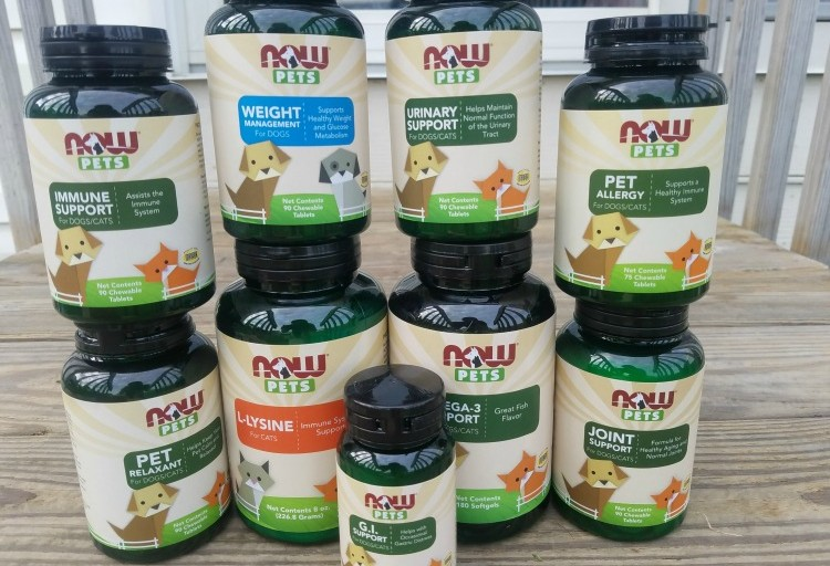 Reasons Why Supplements are Good for your Pet