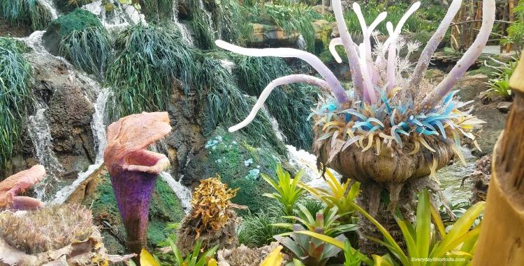 plants-at-Pandora