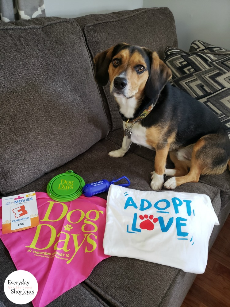 dog-days-giveaway
