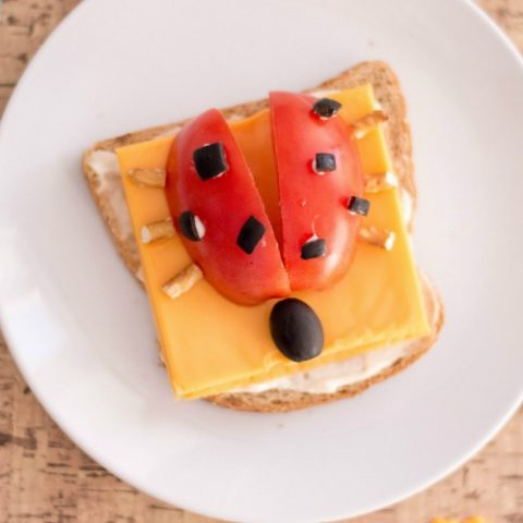 lady-bug-open-faced-sandwich-480x480