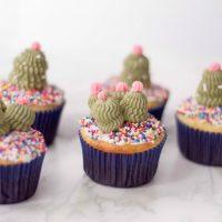CactiCupcakes-200x200