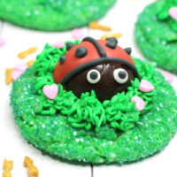 Love-Bug-Cookies-Recipe-200x200