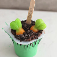 dirt-pudding-with-carrots-200x200