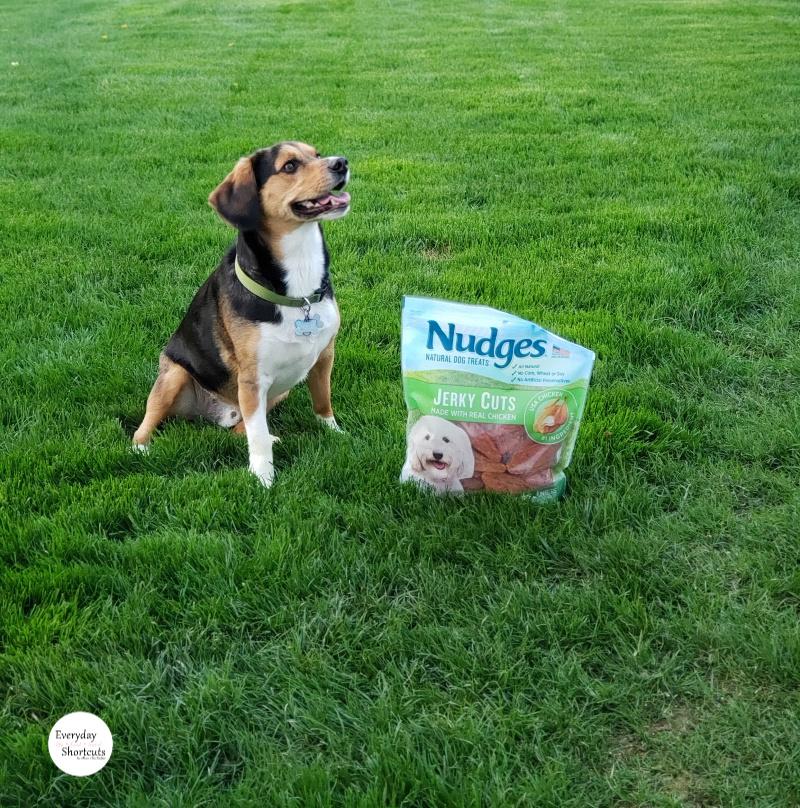 reggie-and-nudges