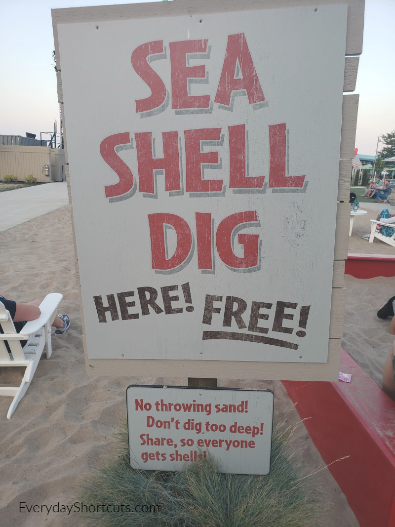 sea-shell-digging