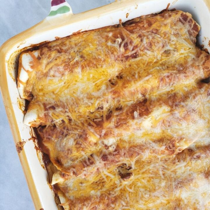 Low Carb Chicken Enchiladas