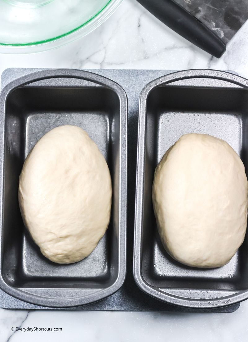 how-to-knead-bread-dough